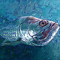 Silver King Tarpon Poster by Pam Talley