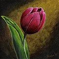 Single Tulip Print by Jesslyn Fraser