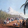 Slaves Cutting The Cane, From Ten Views Print by William Clark