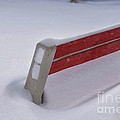 Snow Covered Bench Poster by Thomas Woolworth