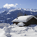 Snow-covered house in the mountains in winter Poster by Matthias Hauser