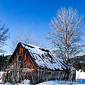 Snowy Cabin Print by Robert Bales