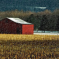 Snowy Red Barn In Winter Print by Lois Bryan