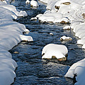 Snowy River view Print by Kiril Stanchev