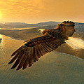 Soaring Eagle Print by Ray Downing