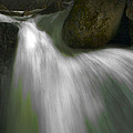 Softwater of Cascade Creek Print by Bill Gallagher