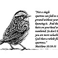 Sparrow drawing with scripture Print by Janet King