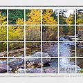 Special Place in the Woods Large White Picture Window View Print by James BO  Insogna