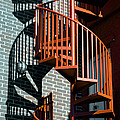 Spiral Stairs - color Print by Darryl Dalton