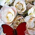 Spray roses and red butterfly Print by Garry Gay