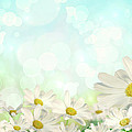 Spring Background with daisies Print by Sandra Cunningham