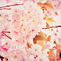 Spring love Print by Angela Doelling AD DESIGN Photo and PhotoArt