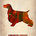 Springer Spaniel Poster Print by Irina  March
