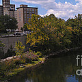 St. Joseph River Panorama by Anna Lisa Yoder