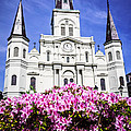 St. Louis Cathedral and Flowers in New Orleans Print by Paul Velgos