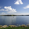 St Mawes from Pendennis Point Print by Rod Johnson