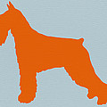 Standard Schnauzer Orange Print by Naxart Studio