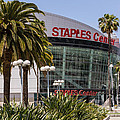 Staples Center in Los Angeles California Print by Paul Velgos
