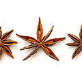 Star anise fruits Print by Fabrizio Troiani