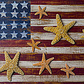 Starfish on American flag Print by Garry Gay