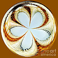 Starfish to Flower - Orb Poster by Kaye Menner