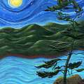 Starry Night at Algonquin Park Print by Catherine Howard