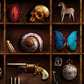 Steampunk - A box of curiosities Print by Mike Savad