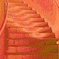 Steps Poster by Wendy J St Christopher