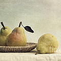 still life with pears Print by Priska Wettstein