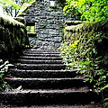 Stone House Stairs Print by Lizbeth Bostrom