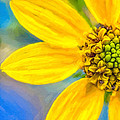 Stone Mountain Yellow Daisy Details - North Georgia Flowers Print by Mark E Tisdale