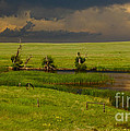 Storm Crossing Prairie 1 Print by Robert Frederick