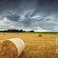 Straw bales pano Poster by Jane Rix