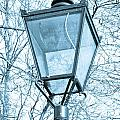 Street lamp Print by Tom Gowanlock