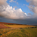 Stunning scene across escarpment countryside landscape with bea Poster by Matthew Gibson