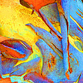 Summer Eucalypt Abstract 29 Poster by Margaret Saheed