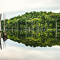 Summer Morning on Monksville Reservoir 2 Print by Gary Heller