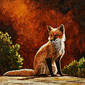 Sun Fox Print by Crista Forest