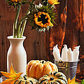 Sunflower and Gourds Still Life Print by Amanda And Christopher Elwell