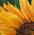 Sunflower from Summer Print by Mary Jo  Zorad
