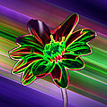 Sunflower In Neon Colors Poster by ImagesAsArt Photos And Graphics