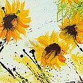 Sunflowers - Abstract painting Poster by Ismeta Gruenwald