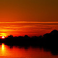 Sunrise At Jefferson Memorial Poster by Metro DC Photography