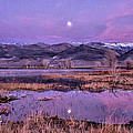 Sunset and Moonrise at Farmers Pond Print by Cat Connor