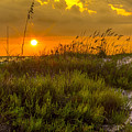 Sunset Dunes Print by Marvin Spates