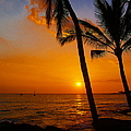 sunset in paradise Print by Athala Carole Bruckner