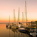 Sunset On The Dock Print by M J Glisson