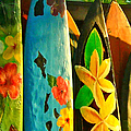 Surf Boards Print by Wingsdomain Art and Photography