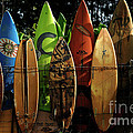 Surfboard Fence 4 Print by Bob Christopher