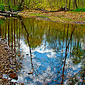 Sweetwater Branch at Mile 363 of Natchez Trace Parkway-TN Print by Ruth Hager